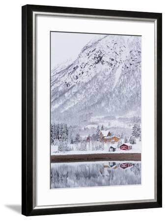 Houses in Fiskefjorden, Hinnoya (Island), Vesteralen, 'Nordland' (County), Norway-Rainer Mirau-Framed Photographic Print