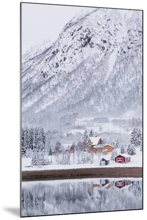 Houses in Fiskefjorden, Hinnoya (Island), Vesteralen, 'Nordland' (County), Norway-Rainer Mirau-Mounted Photographic Print