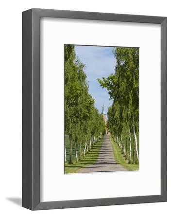 Denmark, Jutland, Avenue of Birches, Country House-Chris Seba-Framed Photographic Print