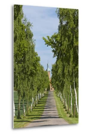 Denmark, Jutland, Avenue of Birches, Country House-Chris Seba-Metal Print