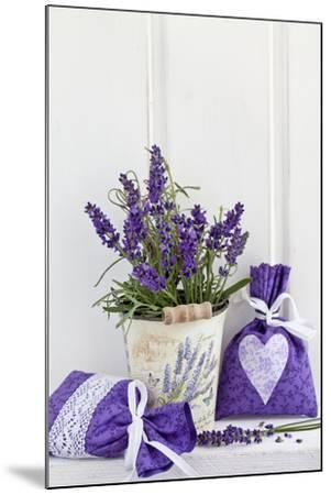 Lavender, Blossoms, Fragrance Sachets, Flowerpot-Andrea Haase-Mounted Photographic Print