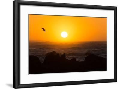 South Africa, Garden Route, Cape Agulhas, Sundown-Catharina Lux-Framed Photographic Print