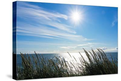 Peninsula Reykjanes, Iceland, Gardskagi, Sea Grass and Sun-Catharina Lux-Stretched Canvas Print