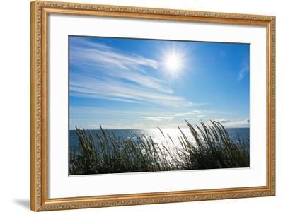 Peninsula Reykjanes, Iceland, Gardskagi, Sea Grass and Sun-Catharina Lux-Framed Photographic Print