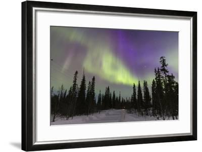 Northern Lights in Winter, Aurora Borealis, PyhŠ-Luosto National Park, Luosto, Lapland, Finland-P. Kaczynski-Framed Photographic Print