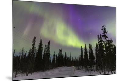Northern Lights in Winter, Aurora Borealis, PyhŠ-Luosto National Park, Luosto, Lapland, Finland-P. Kaczynski-Mounted Photographic Print