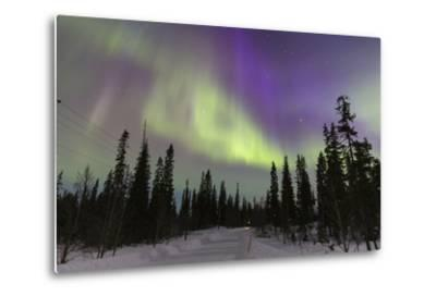 Northern Lights in Winter, Aurora Borealis, PyhŠ-Luosto National Park, Luosto, Lapland, Finland-P. Kaczynski-Metal Print