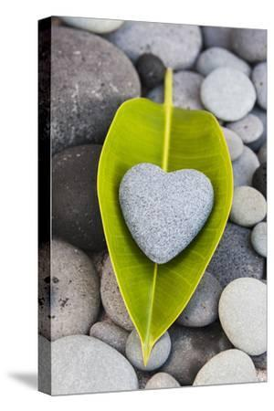 Heart Made of Stone on Green Leaves-Uwe Merkel-Stretched Canvas Print