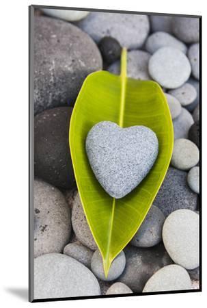 Heart Made of Stone on Green Leaves-Uwe Merkel-Mounted Photographic Print