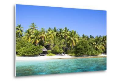 The Maldives, Sea, Palms, HŸtte (Hut)-Frank Lukasseck-Metal Print