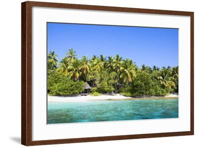 The Maldives, Sea, Palms, HŸtte (Hut)-Frank Lukasseck-Framed Photographic Print