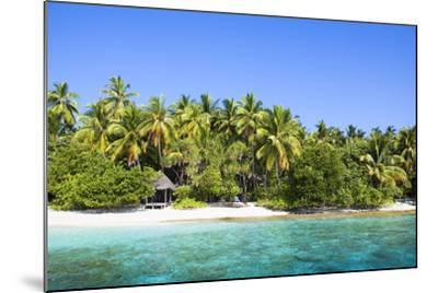 The Maldives, Sea, Palms, HŸtte (Hut)-Frank Lukasseck-Mounted Photographic Print