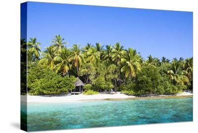 The Maldives, Sea, Palms, HŸtte (Hut)-Frank Lukasseck-Stretched Canvas Print