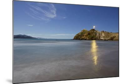 Castle Point Lighthouse in the Moonlight, Wellington, North Island, New Zealand-Rainer Mirau-Mounted Photographic Print