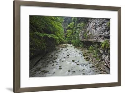 Austria, Vorarlberg, Dornbirn (Village), Rappenlochschlucht (Ravine) (Gulch)-Rainer Mirau-Framed Photographic Print