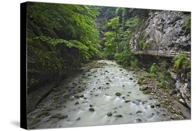Austria, Vorarlberg, Dornbirn (Village), Rappenlochschlucht (Ravine) (Gulch)-Rainer Mirau-Stretched Canvas Print