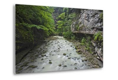 Austria, Vorarlberg, Dornbirn (Village), Rappenlochschlucht (Ravine) (Gulch)-Rainer Mirau-Metal Print