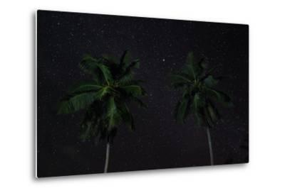 The Seychelles, La Digue, Palms, Starry Sky-Catharina Lux-Metal Print