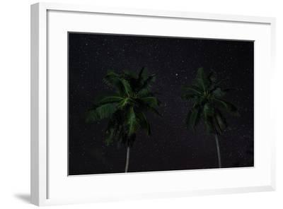 The Seychelles, La Digue, Palms, Starry Sky-Catharina Lux-Framed Photographic Print