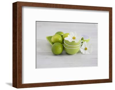 Cosmea, Flower, White, Shells, Lime, Green, Still Life-Andrea Haase-Framed Photographic Print