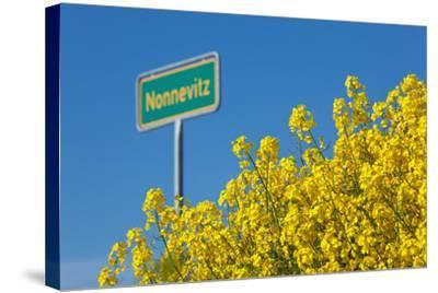 RŸgen, Rape in Front of Blue Sky, Town Sign Nonnevitz-Catharina Lux-Stretched Canvas Print