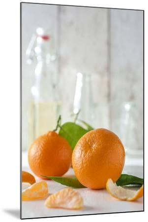 Clementines with Foliage, Pieces of Clementines and Peel in Front of Bright Background-Jana Ihle-Mounted Photographic Print