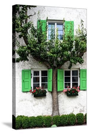House, View, Tree-Jule Leibnitz-Stretched Canvas Print