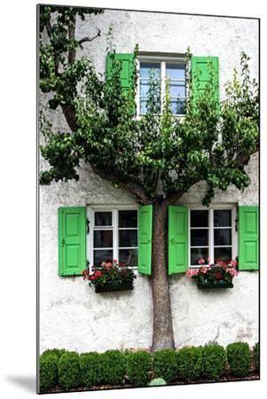 House, View, Tree-Jule Leibnitz-Mounted Photographic Print