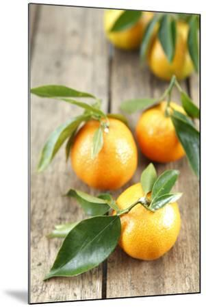 Clementines with Leaves on Wood-Nikky-Mounted Photographic Print