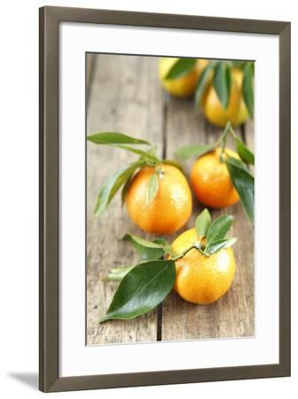 Clementines with Leaves on Wood-Nikky-Framed Photographic Print