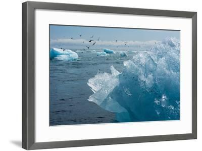 Atlantic Coast with Iceberg Remains at the Jškulsarlon-Catharina Lux-Framed Photographic Print