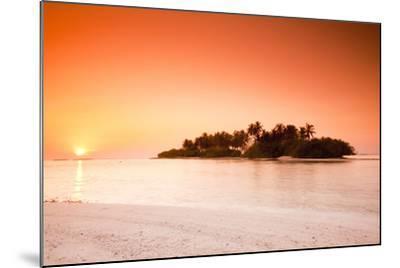 The Maldives, Sea, Palm Island, Sunrise-Frank Lukasseck-Mounted Photographic Print
