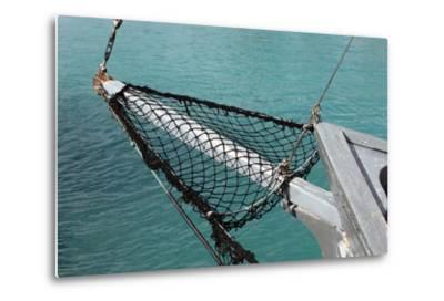Sea, Water, Fishing Boat, Net-Catharina Lux-Metal Print