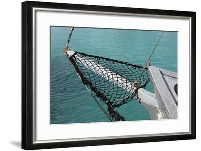 Sea, Water, Fishing Boat, Net-Catharina Lux-Framed Photographic Print