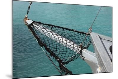 Sea, Water, Fishing Boat, Net-Catharina Lux-Mounted Photographic Print