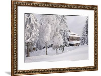 Germany, Baden-WŸrttemberg, Black Forest, Yellow Water Rose Sea, Hotel-Roland T.-Framed Photographic Print