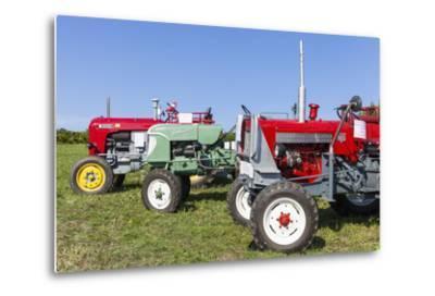 Convention for Classic Tractors, PfaffstŠtten, Lower Austria, Austria, Europe-Gerhard Wild-Metal Print