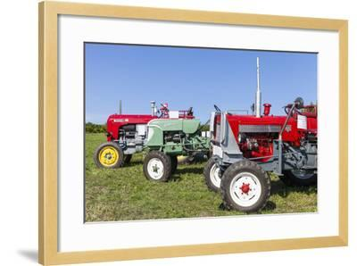 Convention for Classic Tractors, PfaffstŠtten, Lower Austria, Austria, Europe-Gerhard Wild-Framed Photographic Print