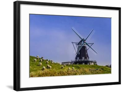 Germany, Schleswig-Holstein, North Frisia, Island of Pellworm, NordermŸhle-Udo Siebig-Framed Photographic Print
