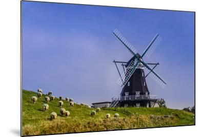 Germany, Schleswig-Holstein, North Frisia, Island of Pellworm, NordermŸhle-Udo Siebig-Mounted Photographic Print