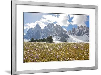 Italy, South Tyrol, the Dolomites, Geislerspitzen-Alfons Rumberger-Framed Photographic Print