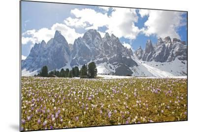 Italy, South Tyrol, the Dolomites, Geislerspitzen-Alfons Rumberger-Mounted Photographic Print