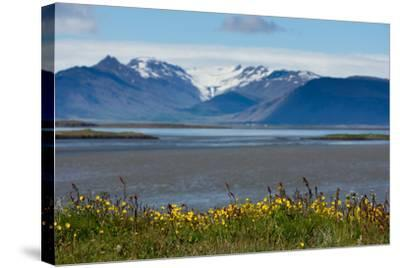 Iceland, Hšfn-Catharina Lux-Stretched Canvas Print