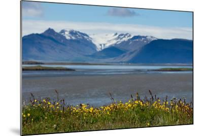 Iceland, Hšfn-Catharina Lux-Mounted Photographic Print