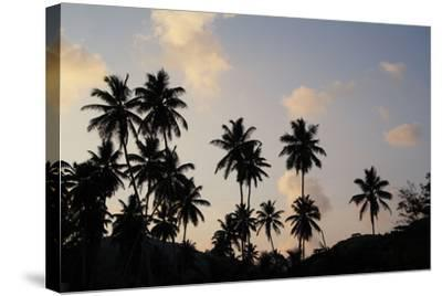 The Seychelles, La Digue, Beach, Palms, Grand' Anse, Dusk-Catharina Lux-Stretched Canvas Print