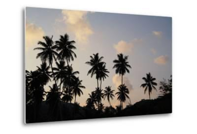 The Seychelles, La Digue, Beach, Palms, Grand' Anse, Dusk-Catharina Lux-Metal Print
