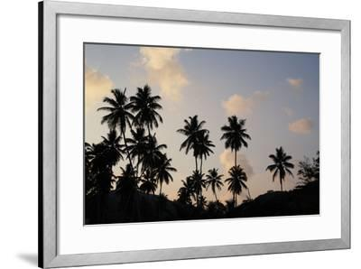 The Seychelles, La Digue, Beach, Palms, Grand' Anse, Dusk-Catharina Lux-Framed Photographic Print