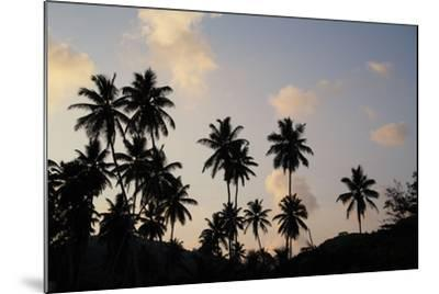 The Seychelles, La Digue, Beach, Palms, Grand' Anse, Dusk-Catharina Lux-Mounted Photographic Print