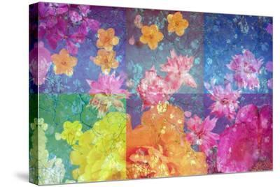Photographic Layer Work from Flowers and Trees-Alaya Gadeh-Stretched Canvas Print