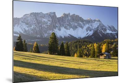 Autumnal Alp in Front of the Mountain Latemar, K?lbleggiesen, South Tyrol-Rainer Mirau-Mounted Photographic Print